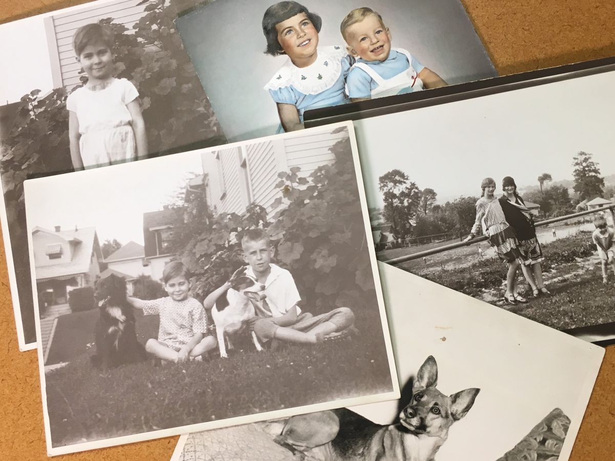 Woman looks to reunite antique photos with family