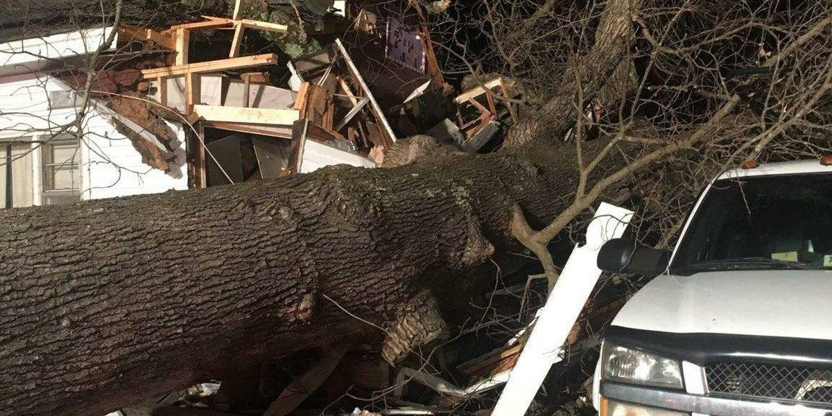 Tree topples onto Hanover home trapping 4 children