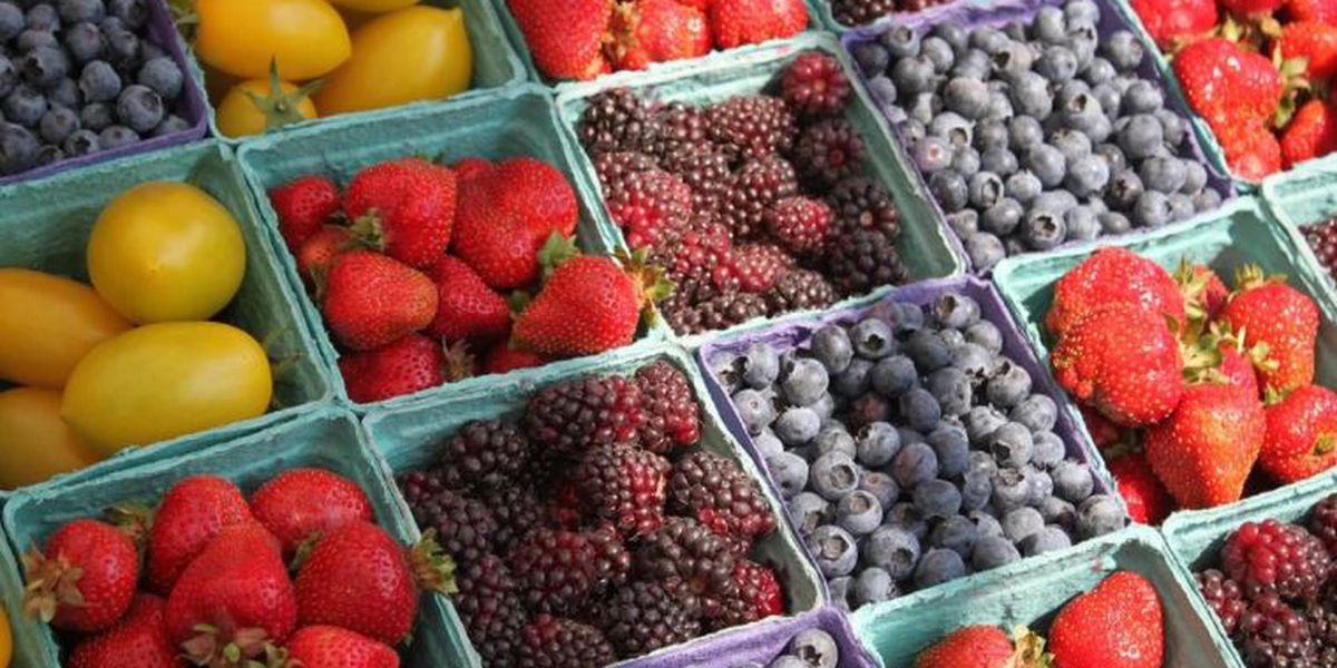 South of the James Farmers Market returns for summer season