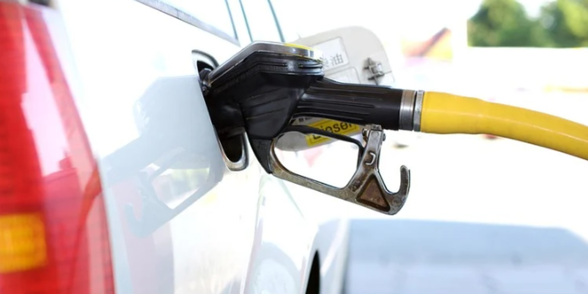 National gas prices stable for five days in a row