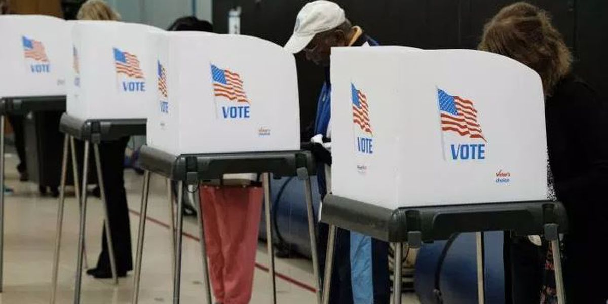 Virginia Defense Force joins election cybersecurity fight