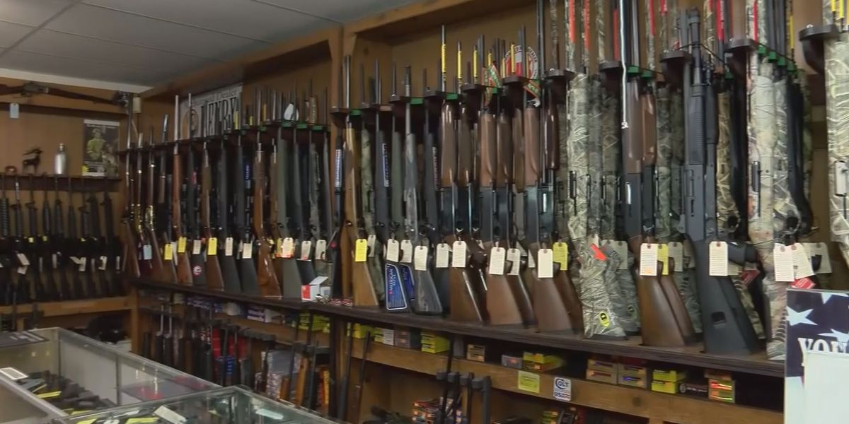 Second Amendment Sanctuary push aims to defy new gun laws