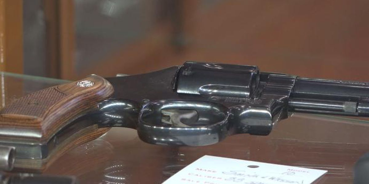 Some gun laws still alive in Virginia's General Assembly
