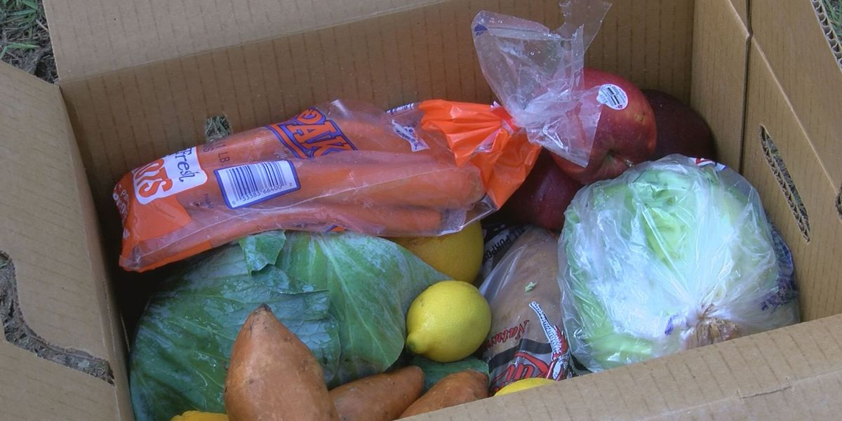 Richmond church distributing 1,300 boxes of groceries each Saturday in August