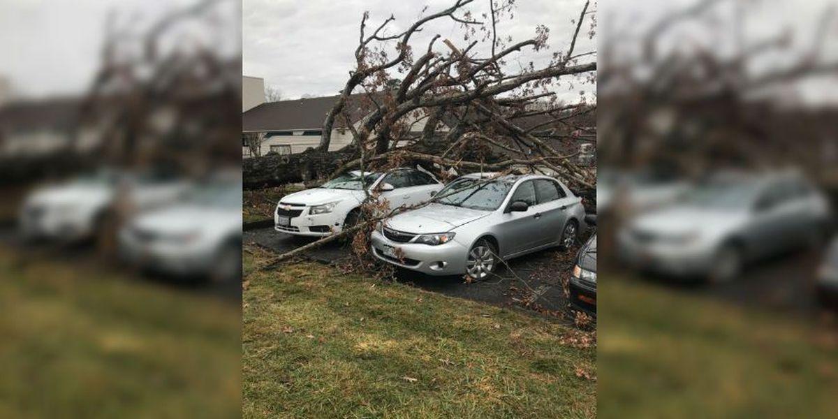 Wave of severe storms crosses Virginia, prompts warnings across state