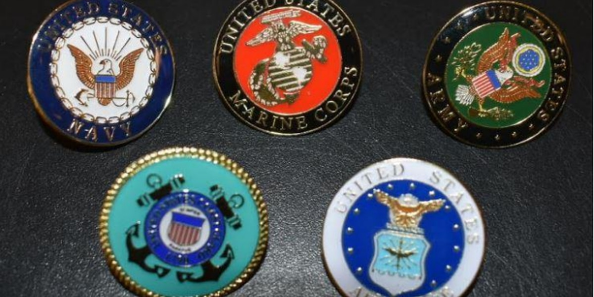 Capitol Police add military service pins to officers uniforms