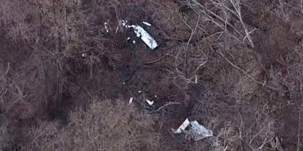 1 killed in small plane crash in Virginia