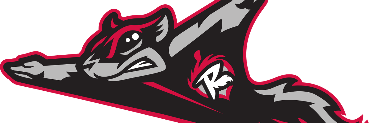 Flying Squirrels looking for residents making difference through community program