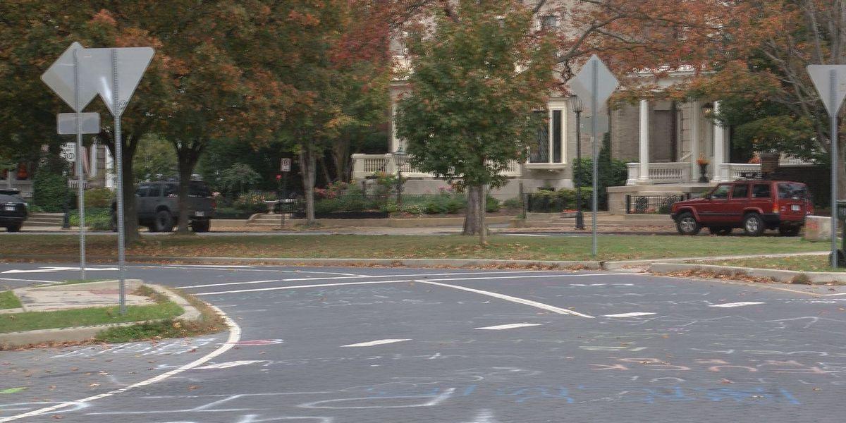 City planning commission delays vote on proposal regarding Lee Circle medians