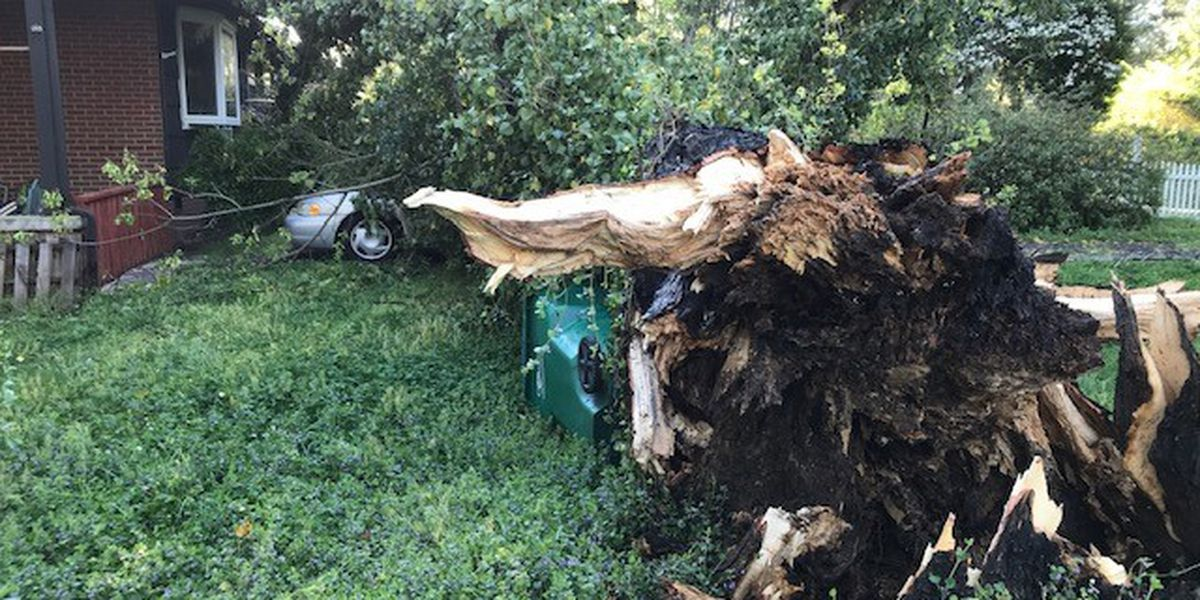 After overnight storms, National Weather Service needs your storm reports