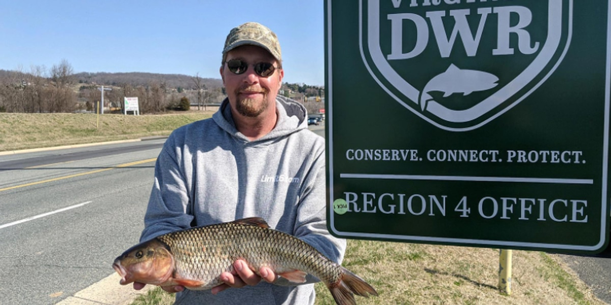 Lexington man sets new state record for fallfish