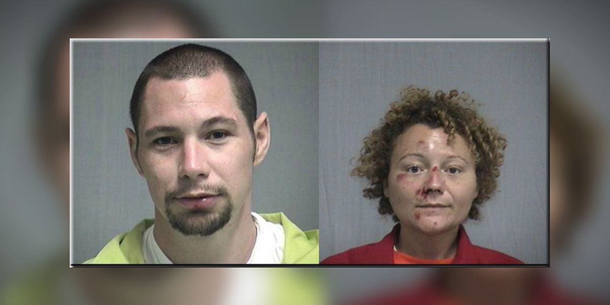 Florida couple stopped for drunken bicycling has sex in patrol car: deputies