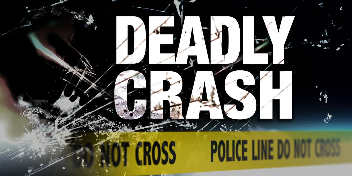 Woman, child killed in crash involving tractor-trailer on I-95