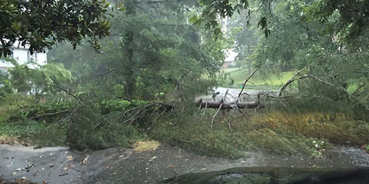 6 Richmond schools closed for summer school due to power outages, storm damage