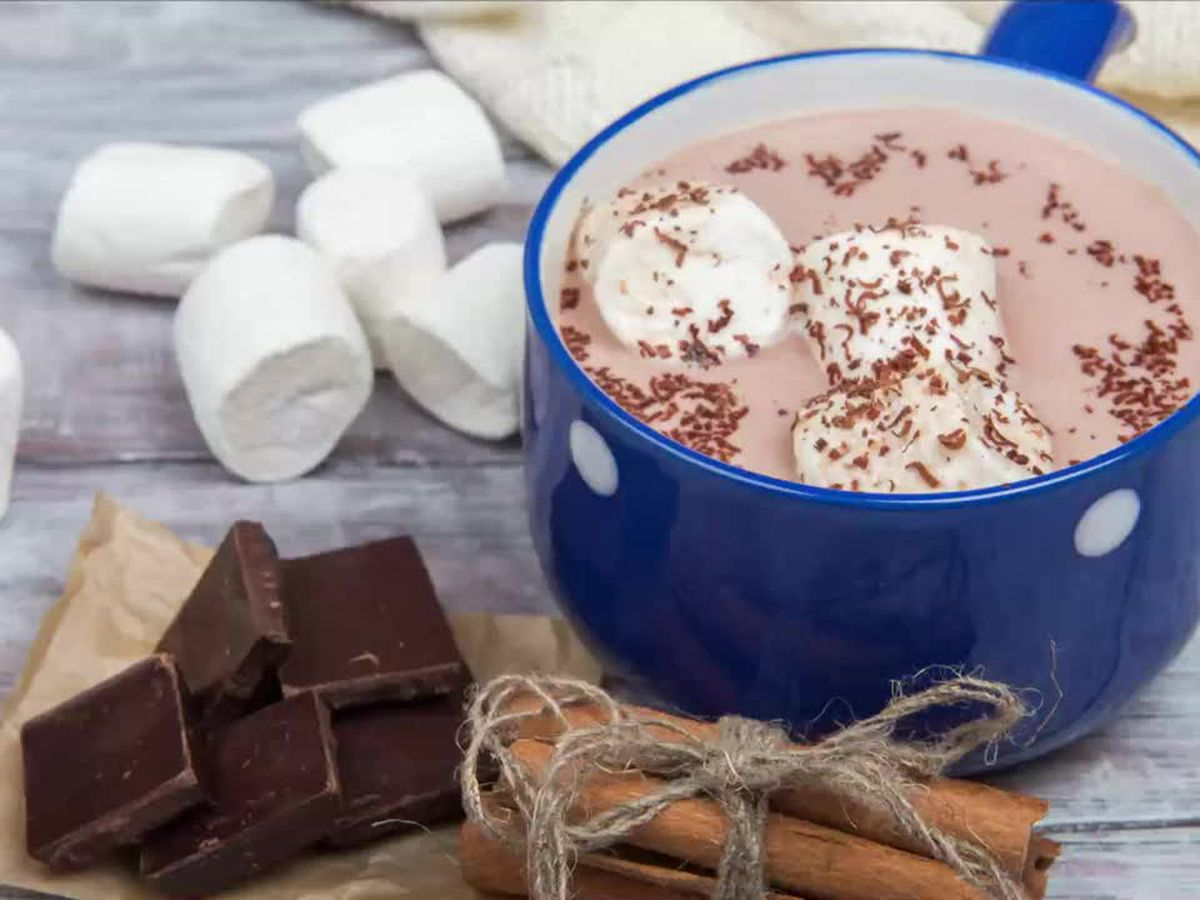 Students to hold hot chocolate stand to help animals affected by wildfires