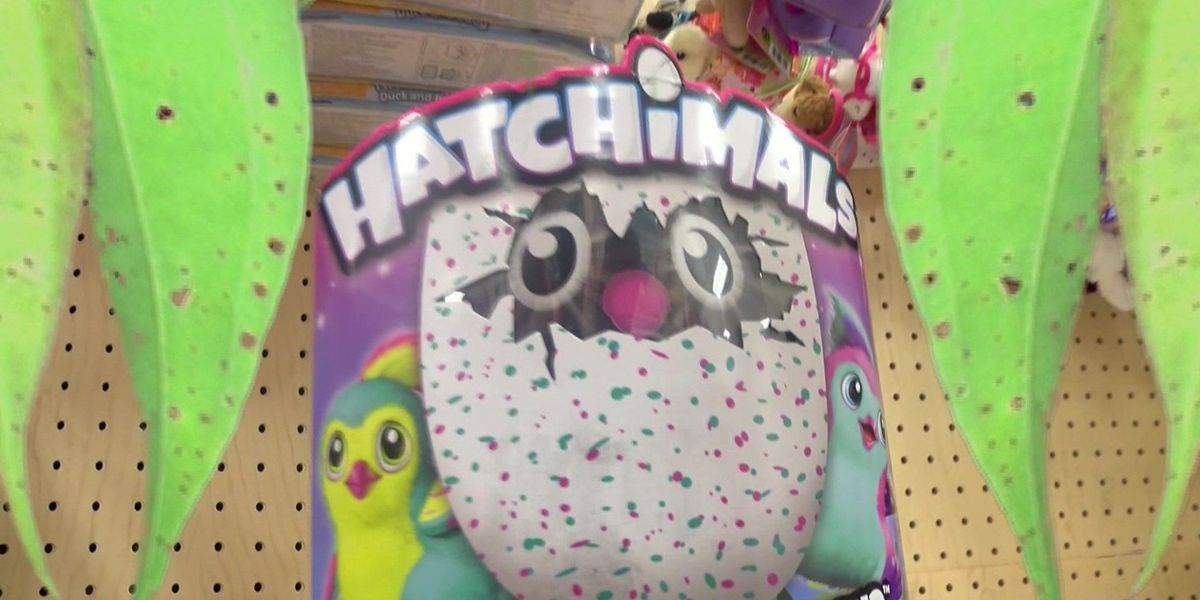 Stores stocking back up on hit toy 'Hatchimals'