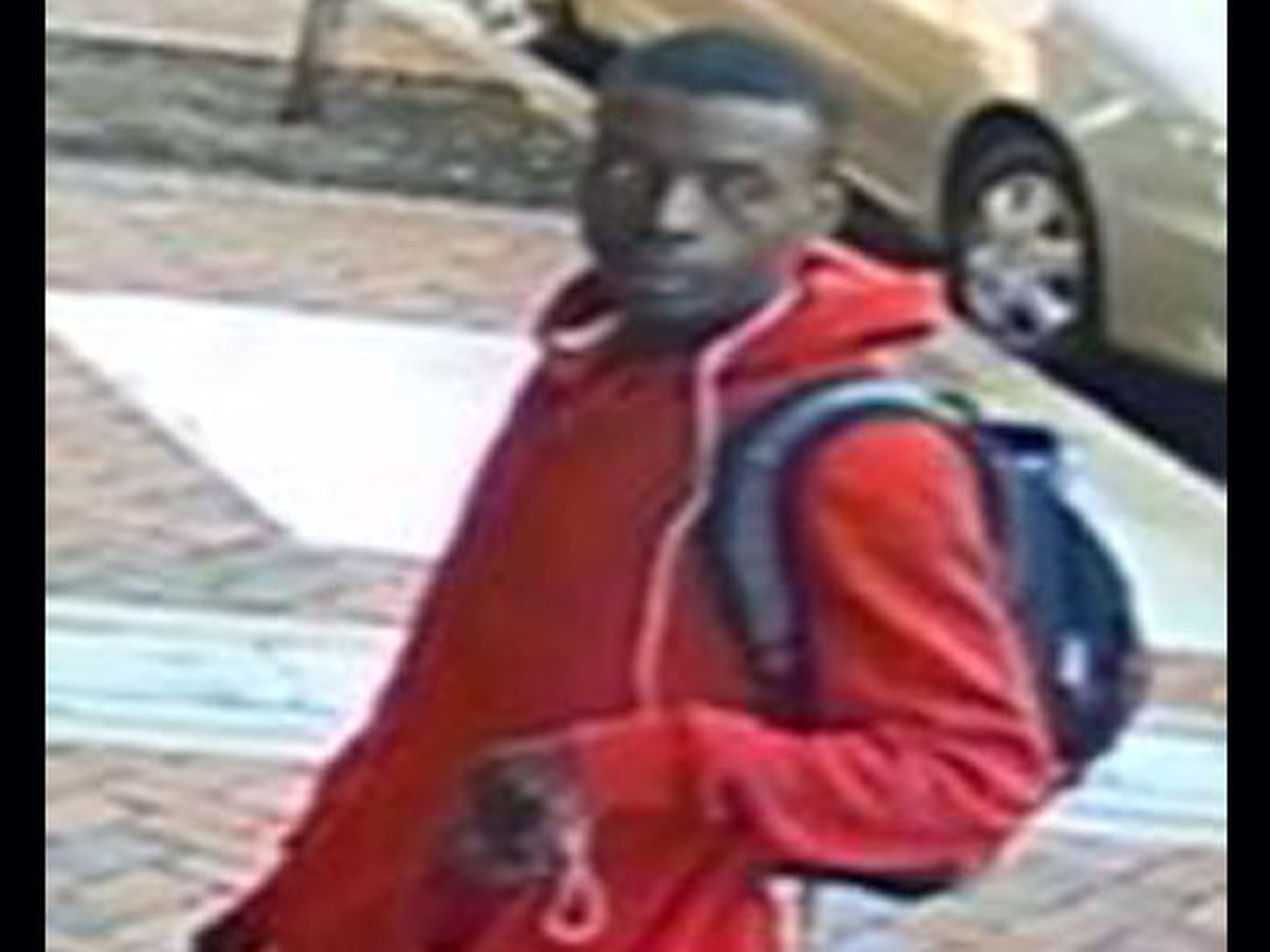 Richmond police looking for package theft suspect