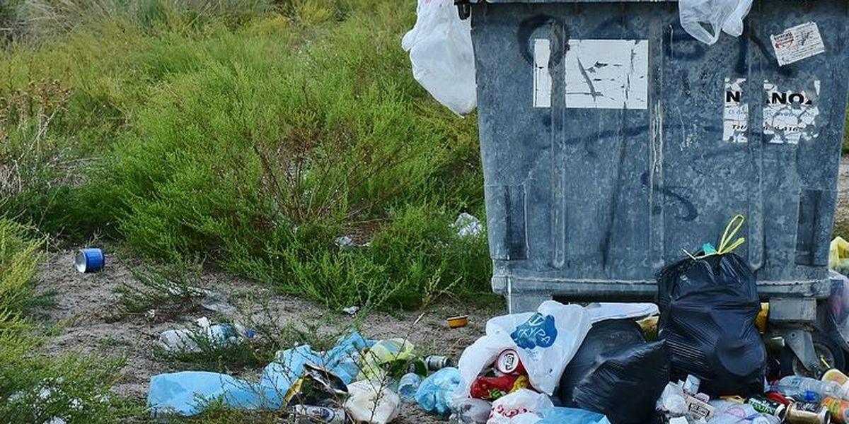 New sponsor-a-highway initiative aims to clear roads of litter