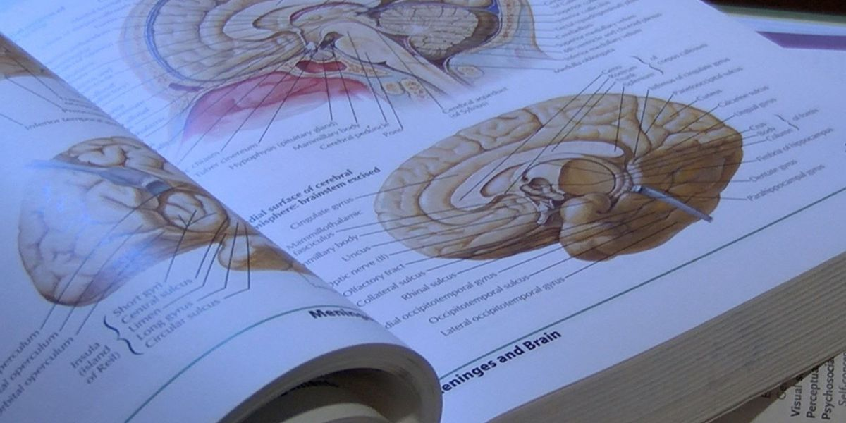 Brain Injury Awareness: It's not just a one-time thing