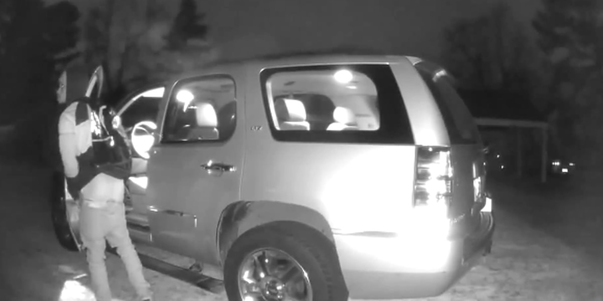 Suspect wanted for stealing from unlocked vehicle in Chesterfield