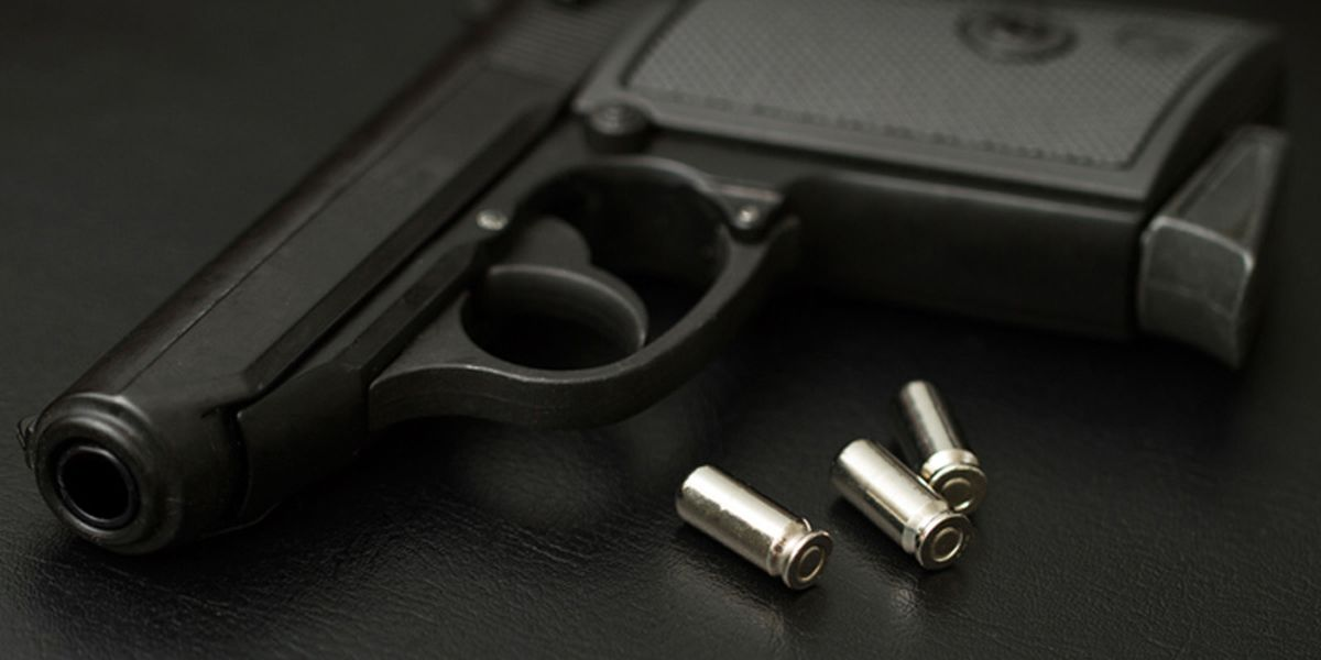 Virginia House advances gun control measures