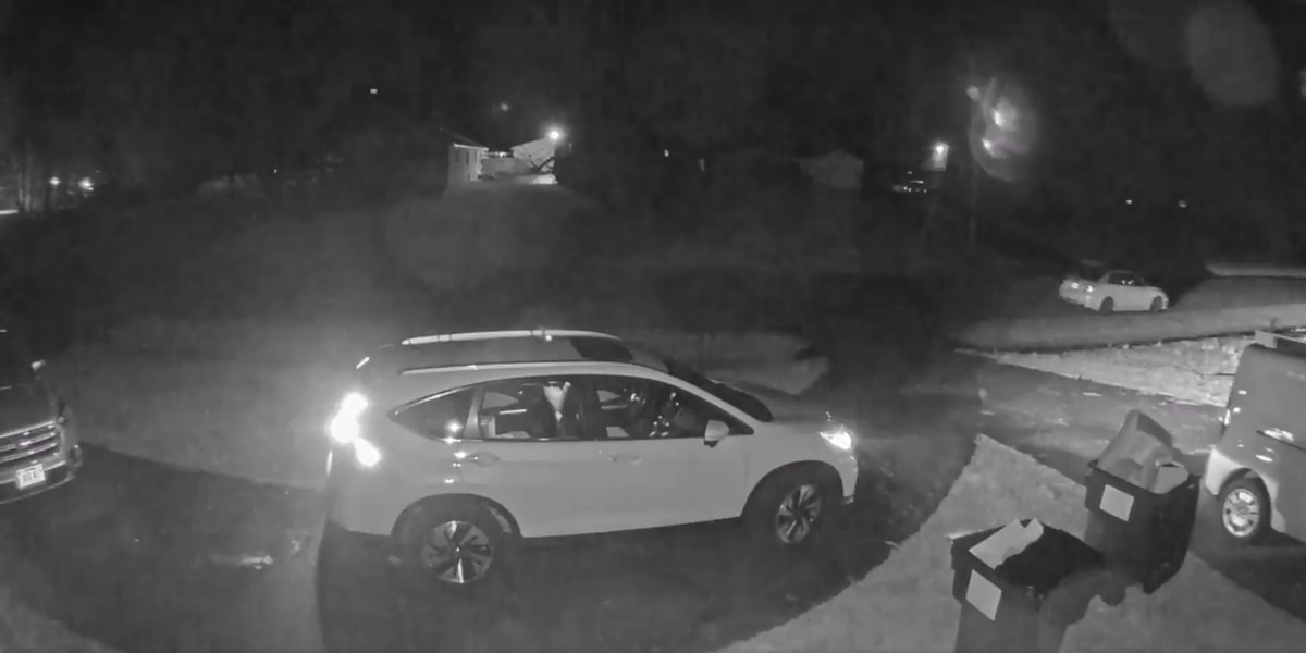 Chesterfield police searching for neighborhood car break-ins suspect