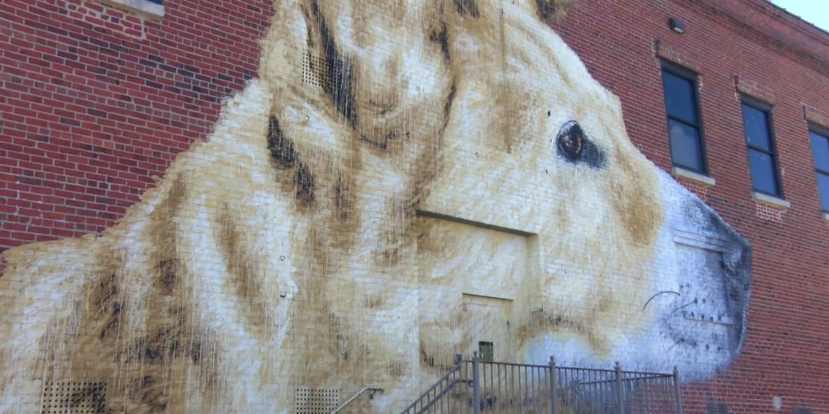 Richmond SPCA's new mural pays tribute to successful adoption story