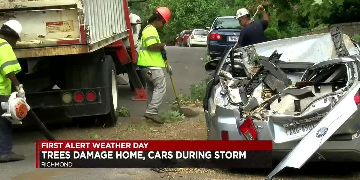 Trees damage home, cars during storm