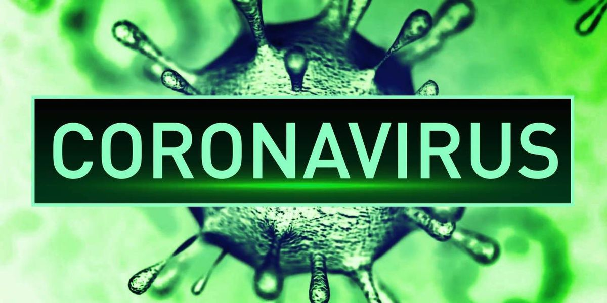 4 employees test positive for COVID-19 at Virginia Boar's Head facility