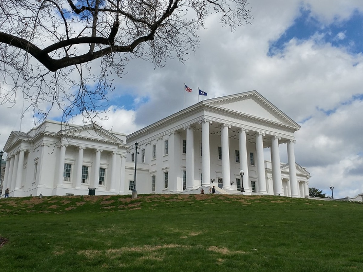 Virginia Senate votes to decriminalize swearing in public