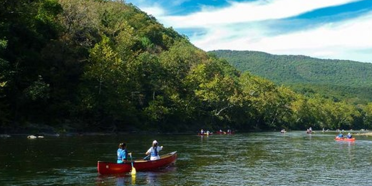 Virginia groups sue U.S. Forest Service over new environmental review standards