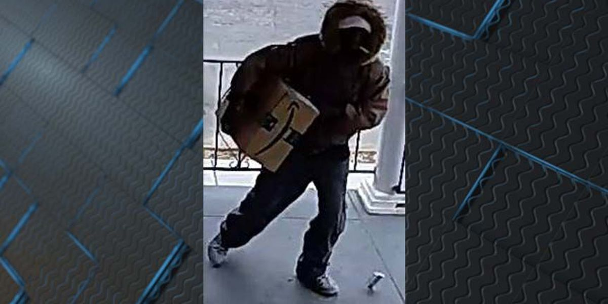 VIDEO: Thief steals package from porch in Richmond's Museum District