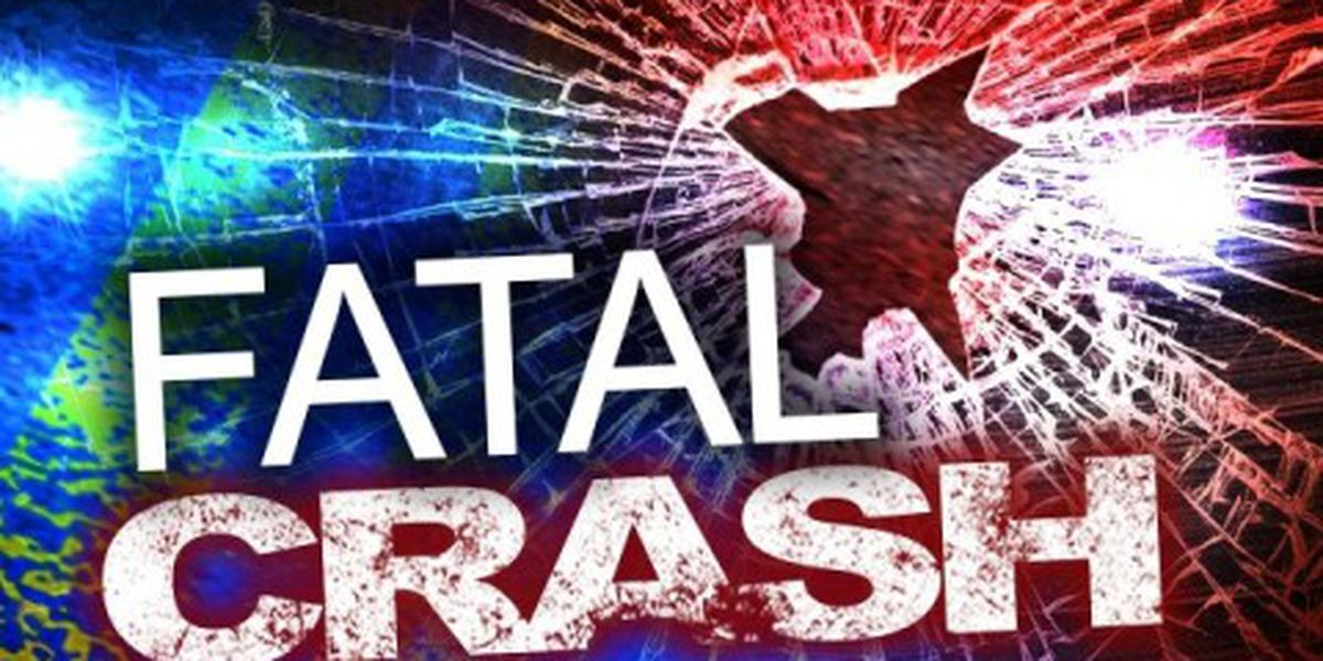 Vehicle runs off road, overturns in Nottoway County; driver killed