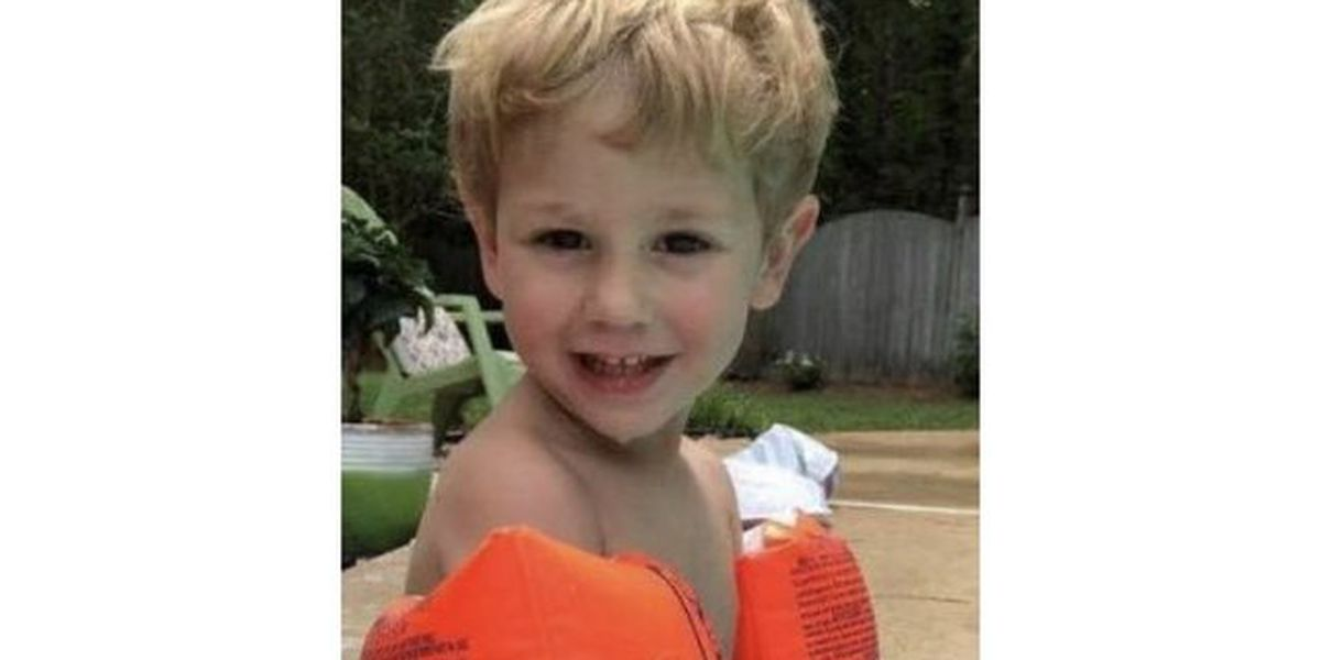 Missing NC toddler found alive, tangled in briers