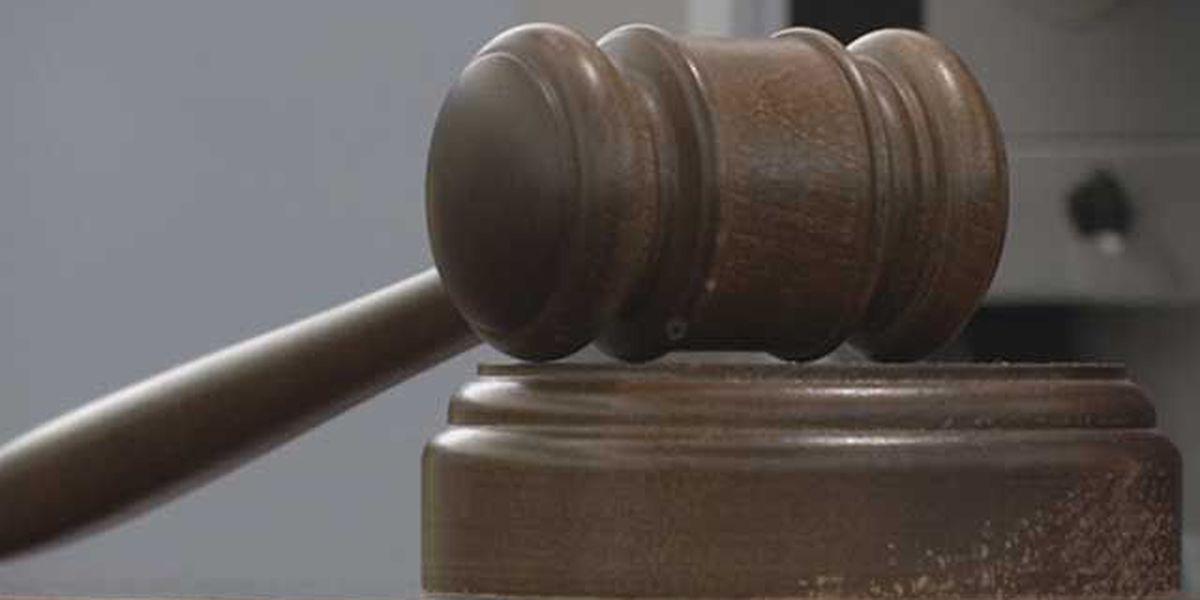 VA court rules against Trump's travel ban