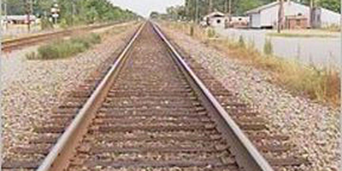 Petersburg teen killed by train