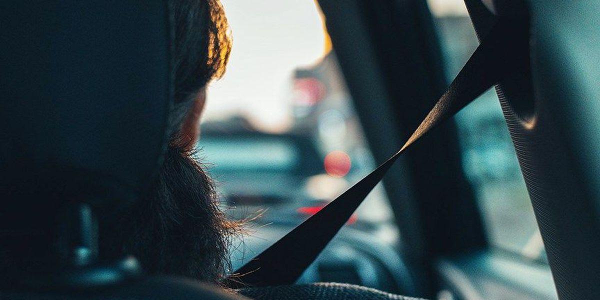 Senate panel rejects stricter seat-belt law