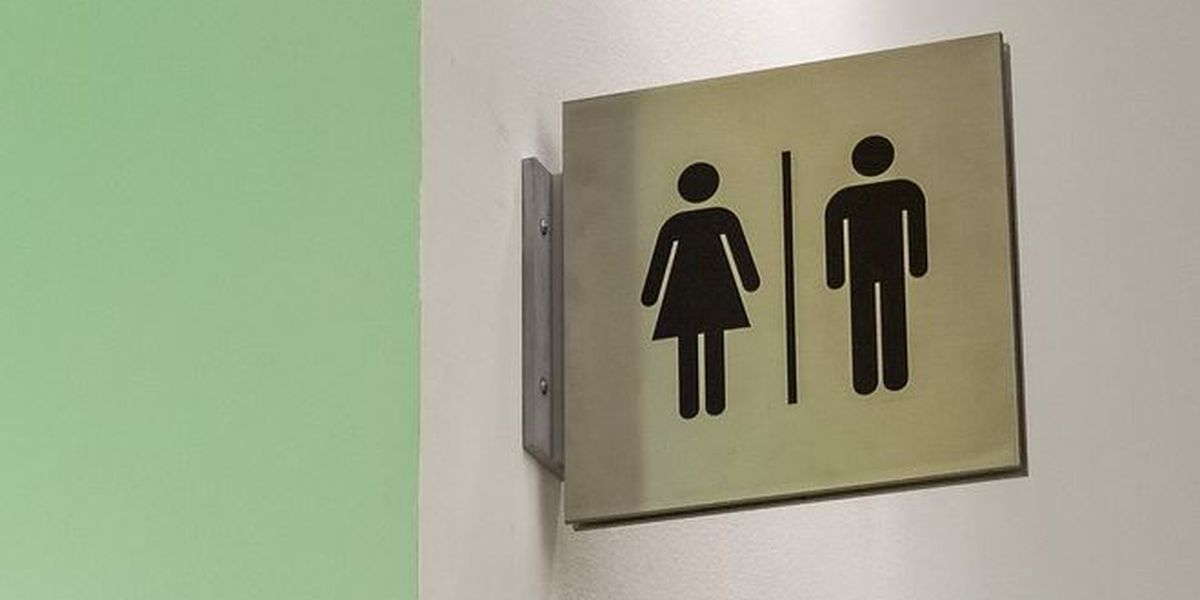 Bill seeks a state model policy for transgender Virginia students