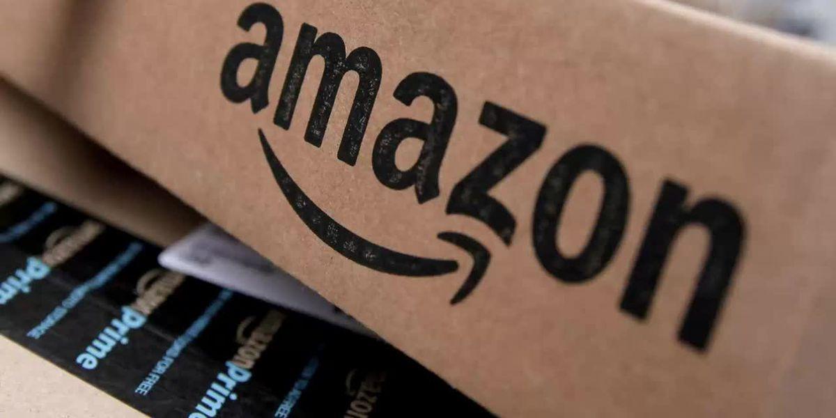 Virginia county approves Amazon incentives despite protests
