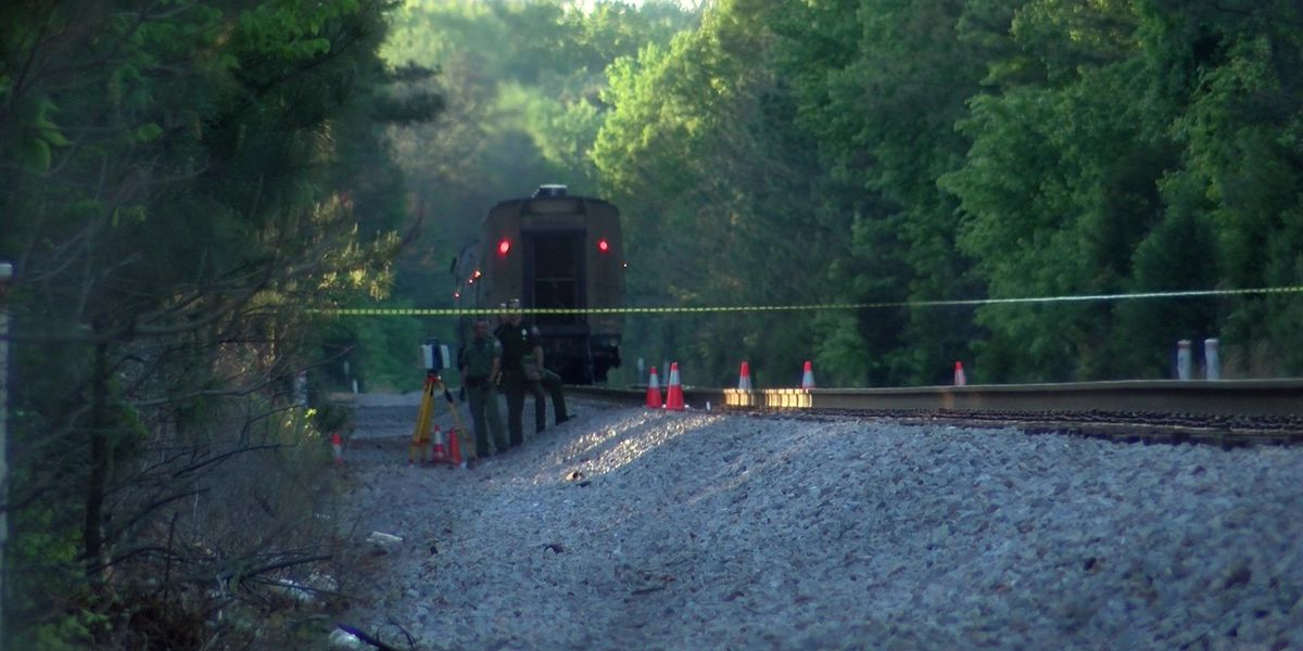 Police ID 2 teens struck, killed by Amtrak train