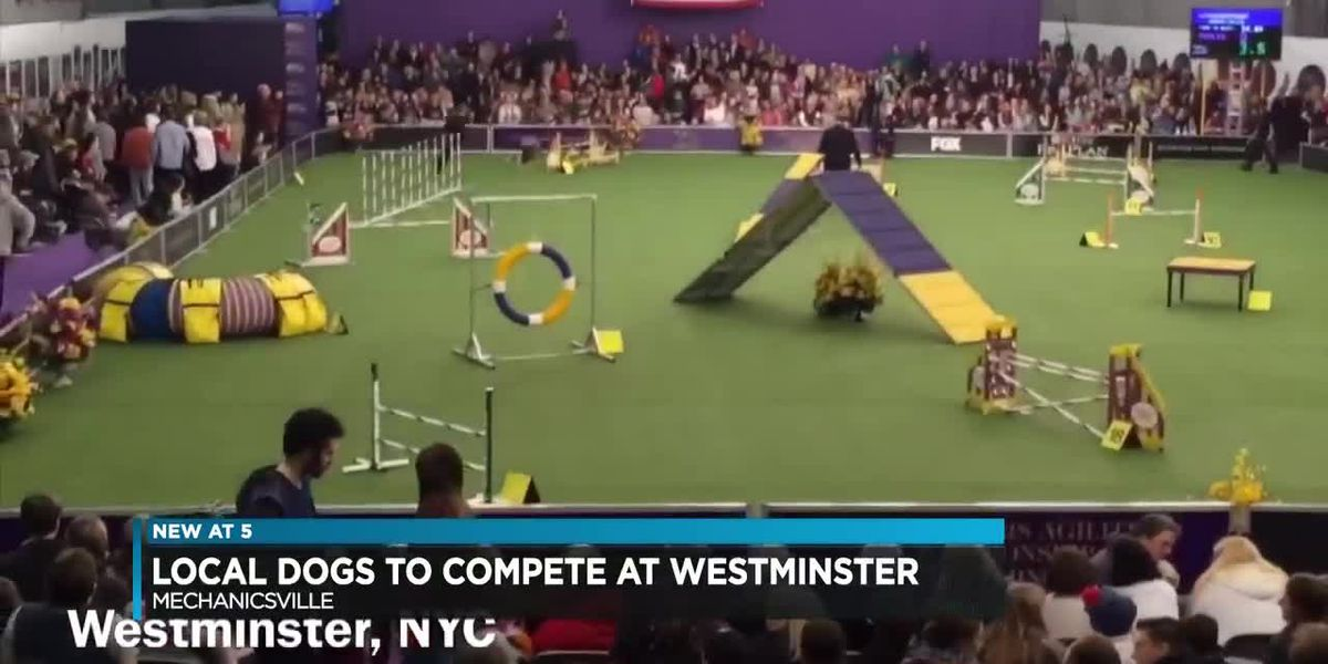 Richmond dogs to compete in Westminster Dog Show