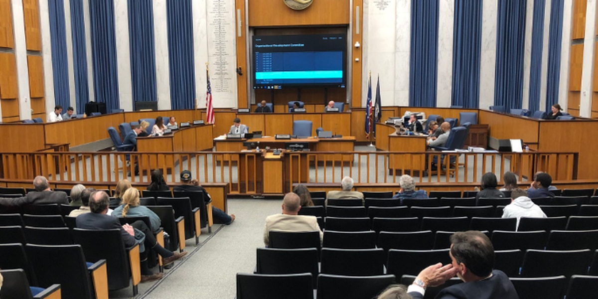 City council committee votes to strike proposed legislation on Navy Hill project