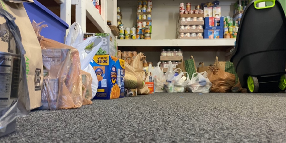 """Dinwiddie County launches """"Dinwiddie Gives"""" campaign to assist local food pantries"""