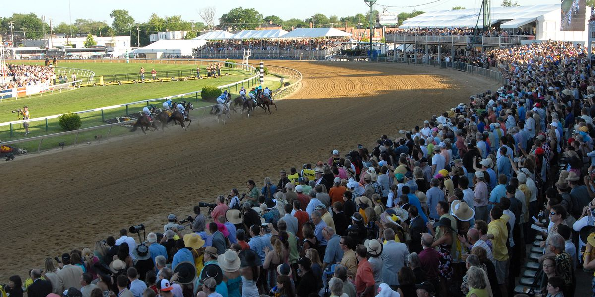 War of Will wins Preakness, holds off riderless horse