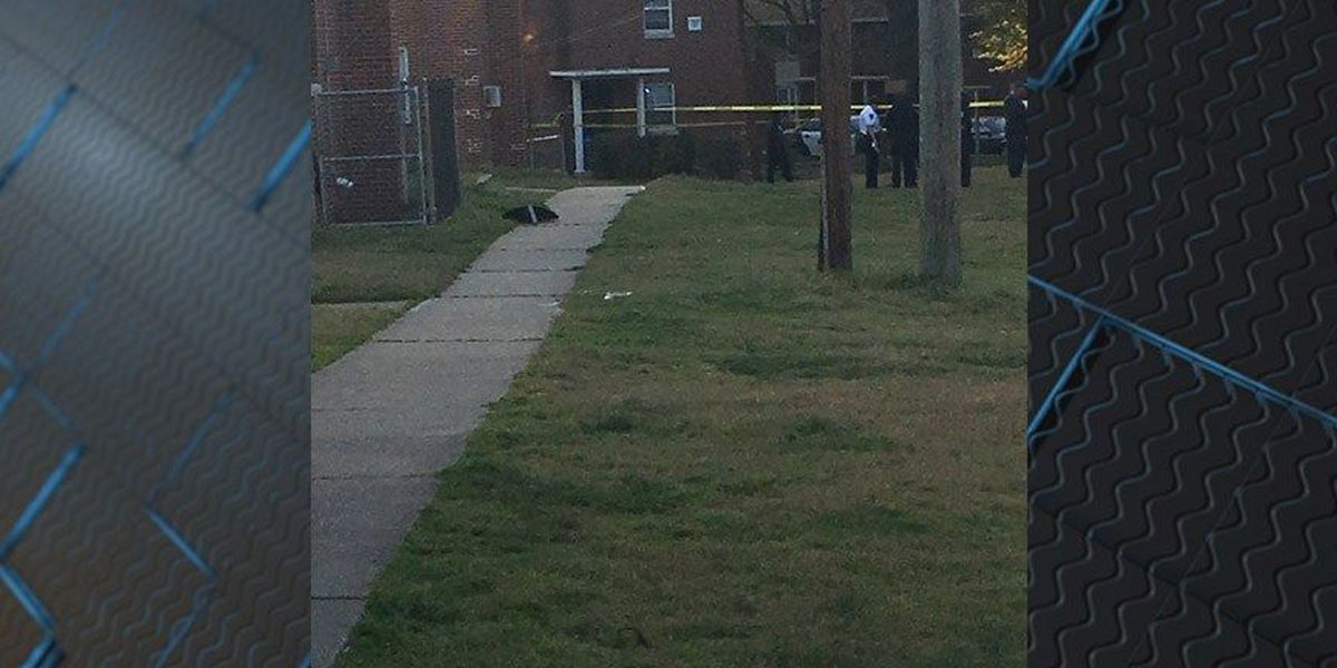 Man shot in the back in Richmond's Mosby Court