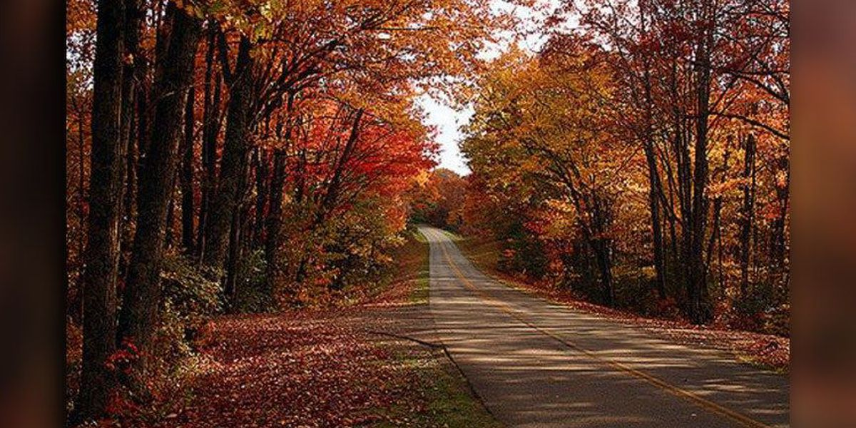 Blue Ridge Parkway makes list of one of the most scenic roads in America