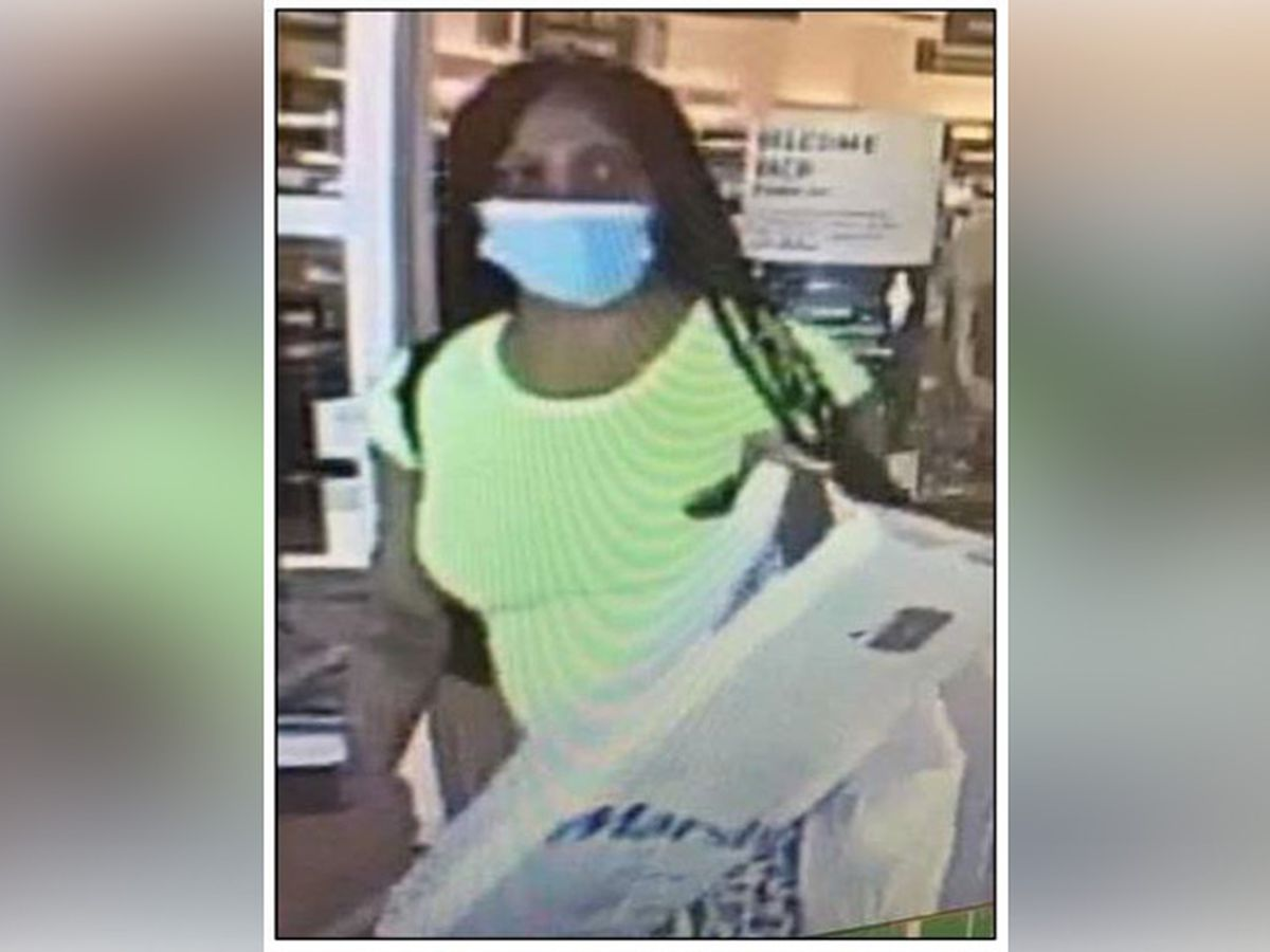 Police search for credit card fraud suspect