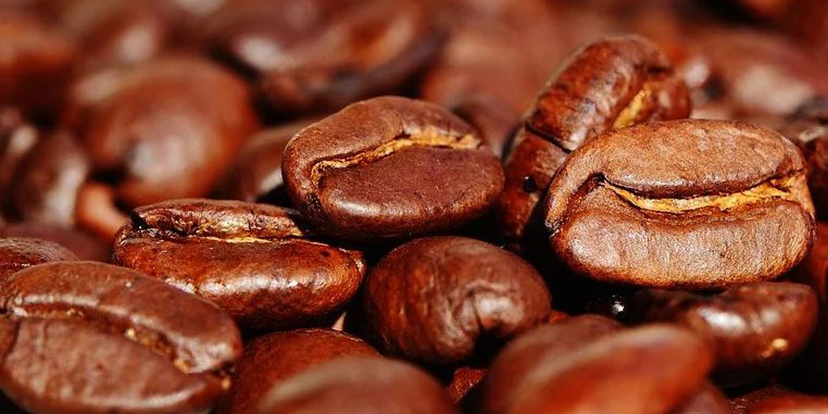 Little Bean Coffee Company gives free coffee to healthcare workers