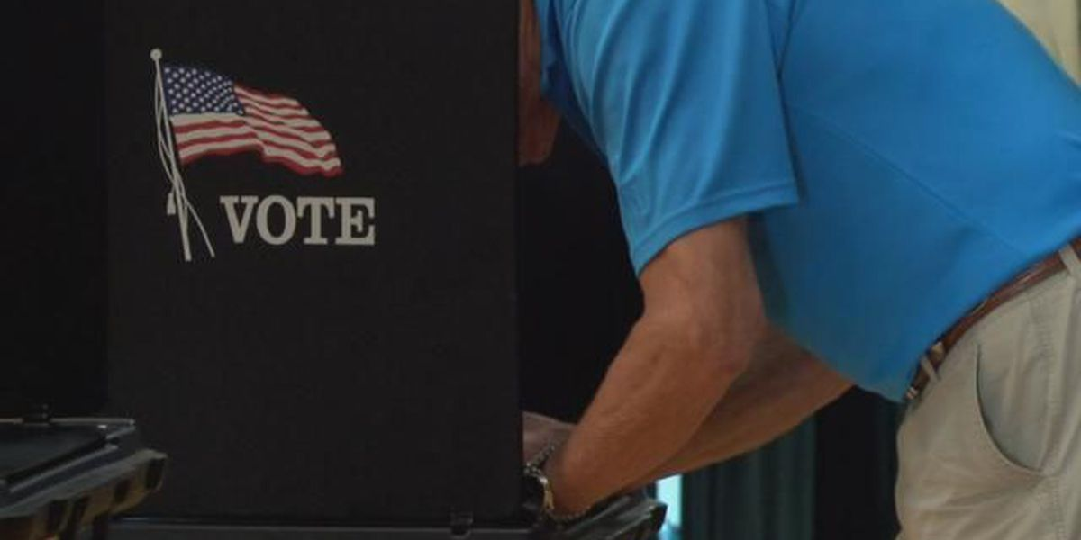 Deadline to register to vote for Nov. election is approaching
