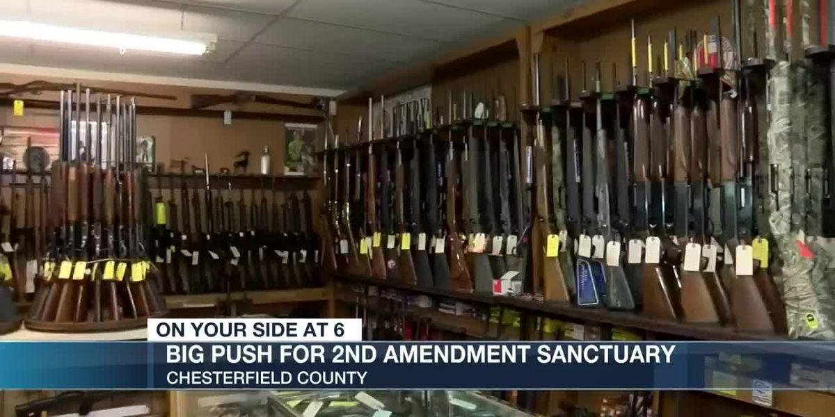 Citizens asking for 2nd Amendment Sanctuary discussion